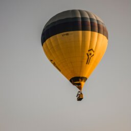 A hot air balloon rises above some trees