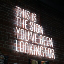 "Neon sign on a brick wall that says ""this is the sign you've been looking for"""